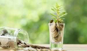 A relação entre educação financeira e sustentabilidade - Copia
