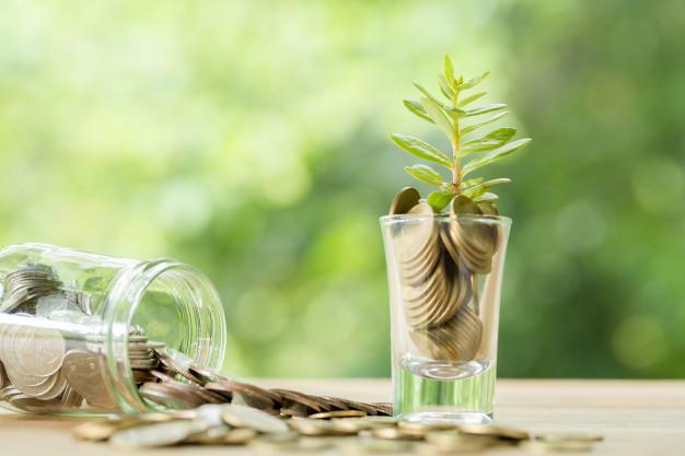 A relação entre educação financeira e sustentabilidade